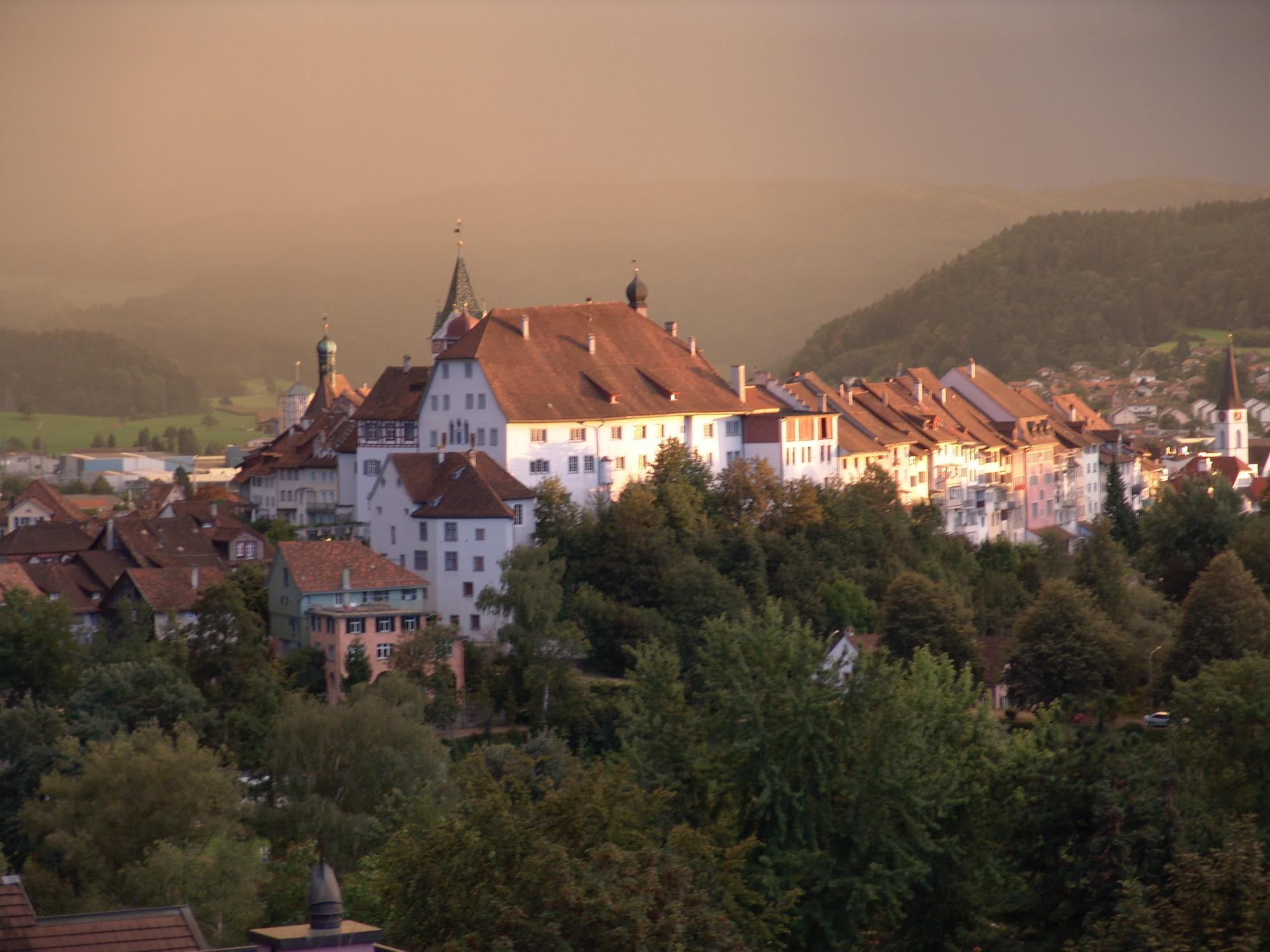 Wil ist eine politische Gemeinde im Ostschweizer Kanton St